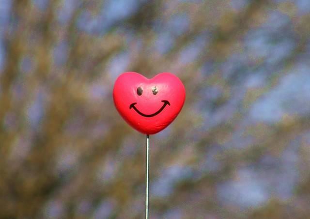 happy heart, healthy heart, heart health