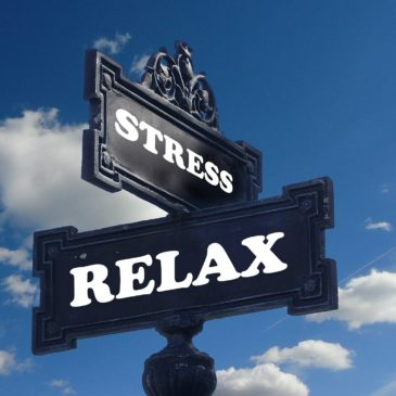 Stress? A risk factor for health?