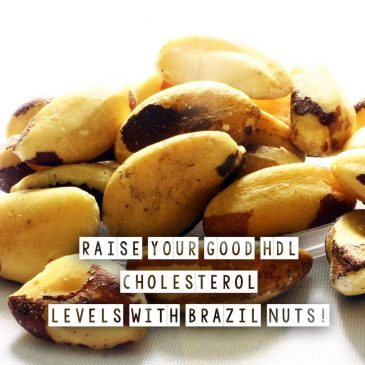 Raise Your HDL Cholesterol Levels