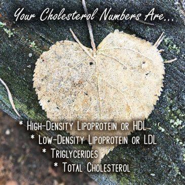 Understanding Cholesterol Numbers